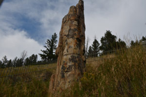 052_yellowstoneTour