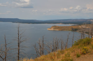 YellowstoneTour_005