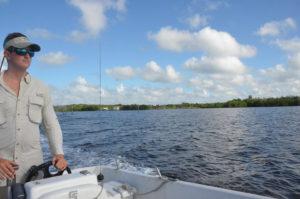 Everglades_034