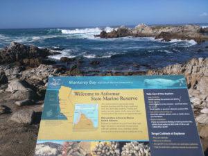Monterey_020