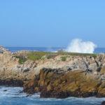 Monterey Shore